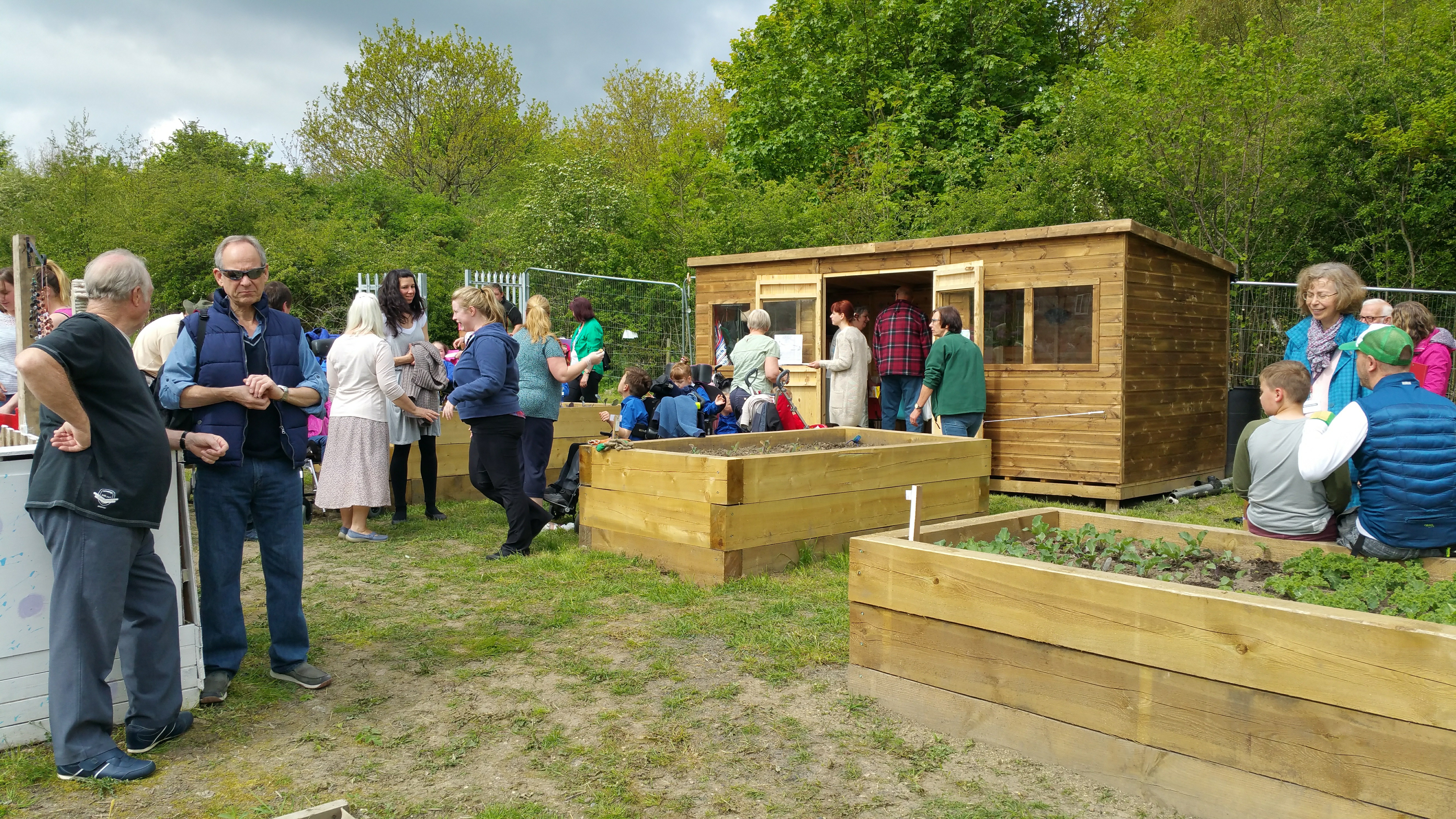 Allotment May 2016 Opening 1
